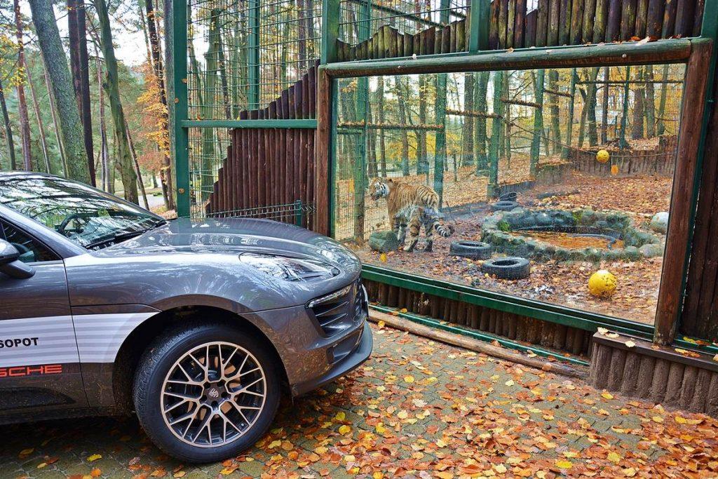 Test Porsche Macan